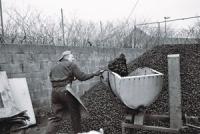 coal-yard-1